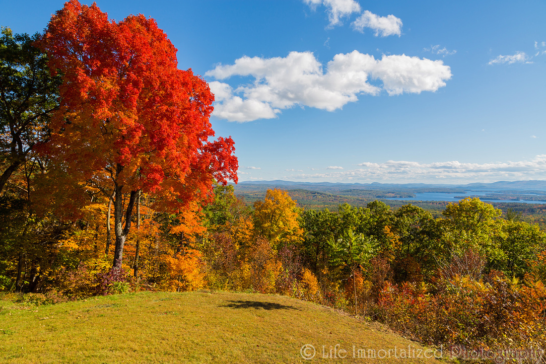 Fall Colors Scenery