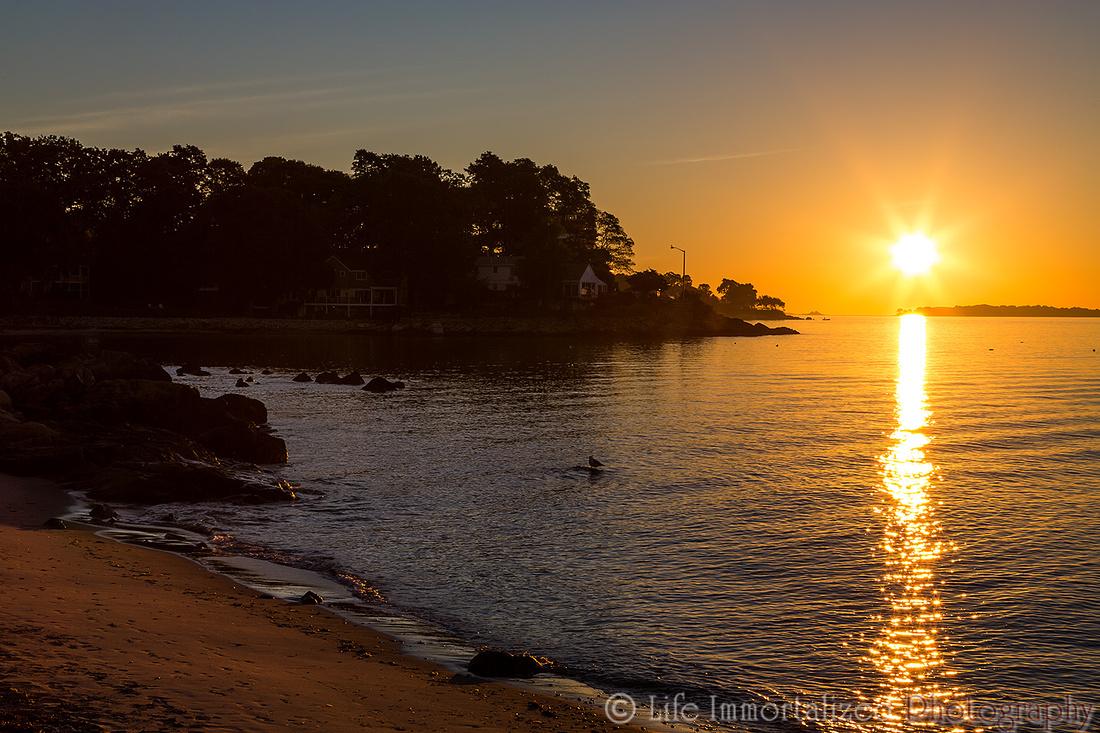 Sunrise at Lynch Park