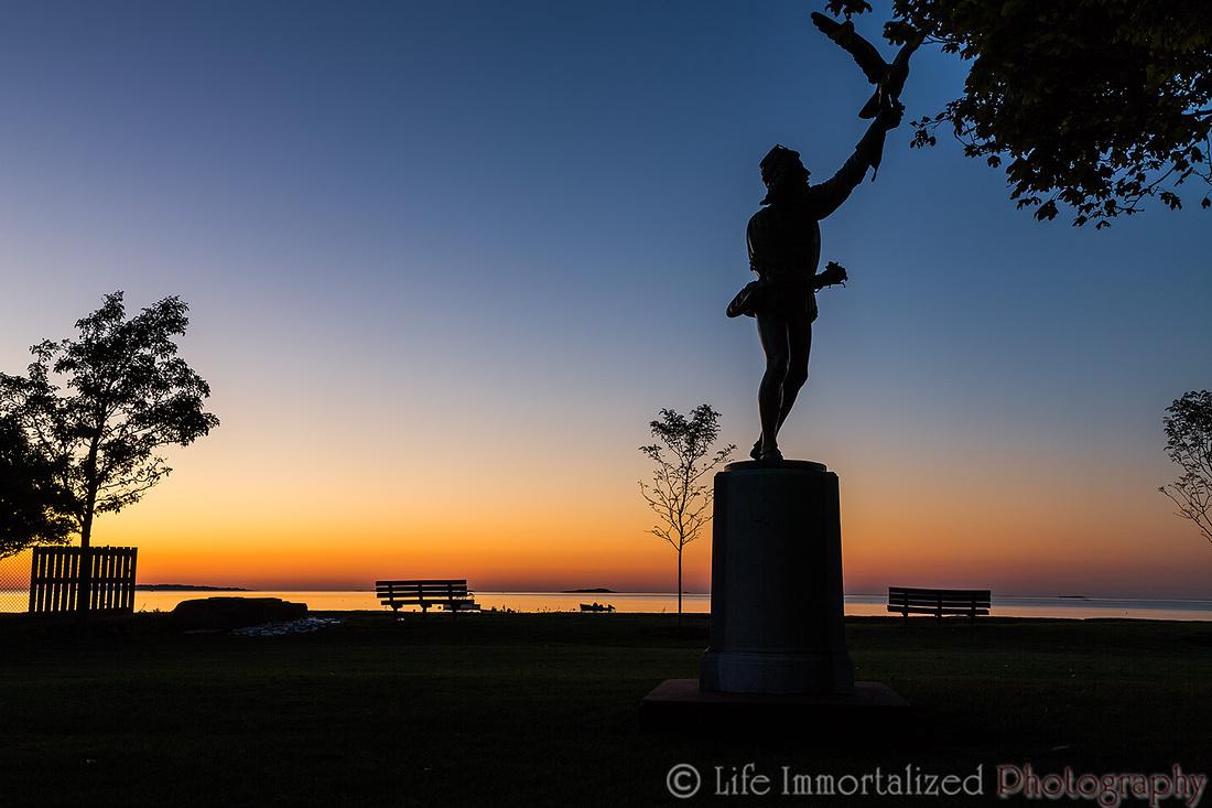 The Falconer at Dawn