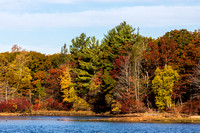 Fall foliage at Breakheart Reservation