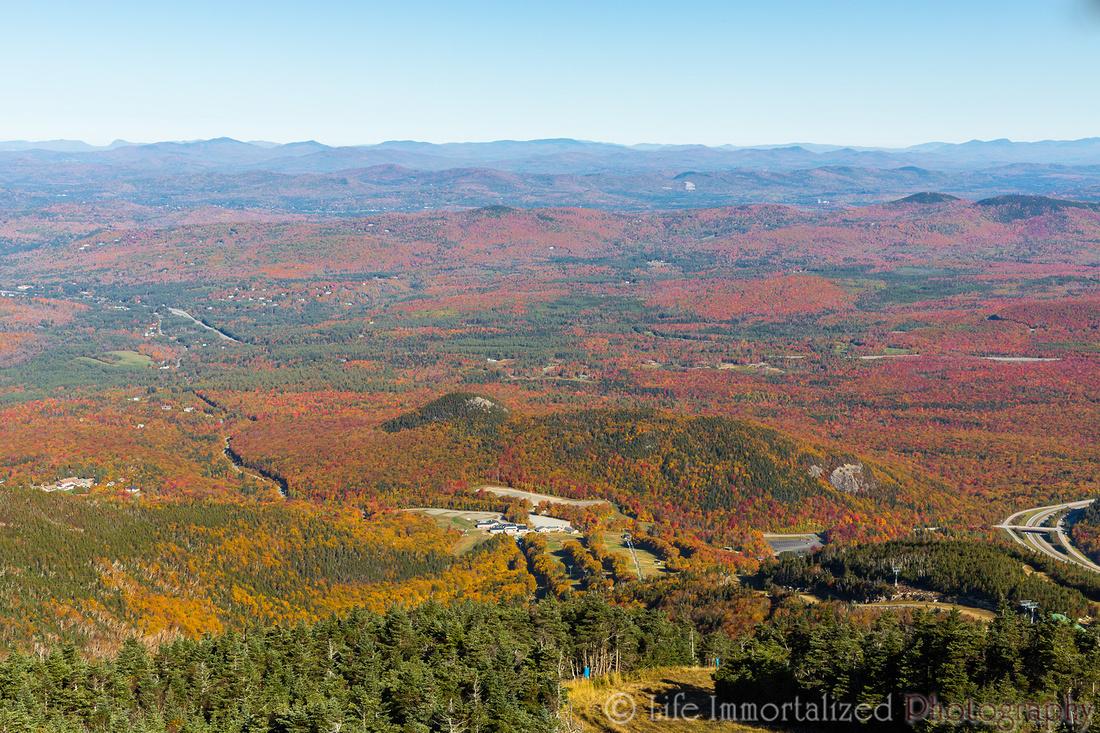 Cannon Mountain Foliage